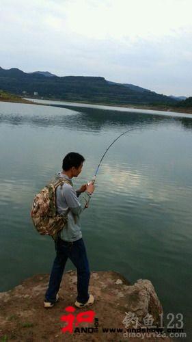 钓友在升钟水库路亚到米级大鲶鱼并放生